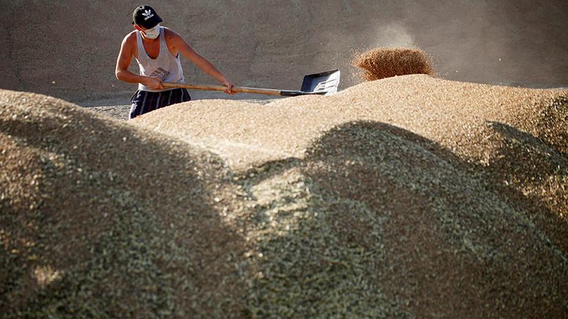 Китайские власти разрешили ввоз пшеницы из шести регионов России