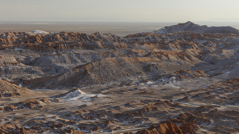 Небеспочвенное подозрение: что могут рассказать бактерии чилийской пустыни Атакама о жизни на Марсе