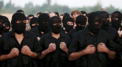 Сирийские террористы