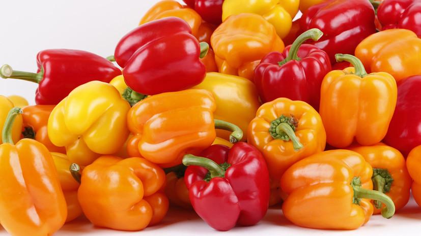Россия разрешит ввоз перцев и салата из Турции