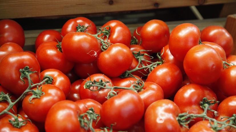 Поставлять томаты в РФ смогут еще 4 турецких компании