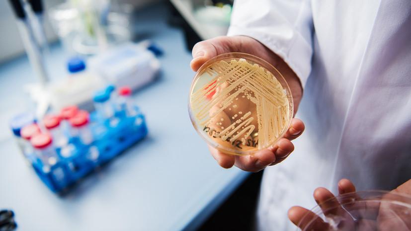 «Перспективы бесконечны»: как новый метод генетической модификации может повлиять на технологический прогресс
