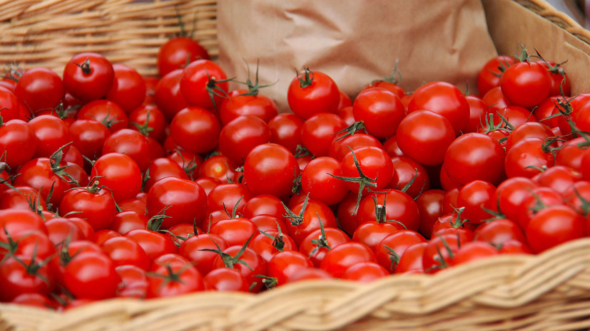 Россельхознадзор разрешил поставки томатов ещё двум турецким компаниям