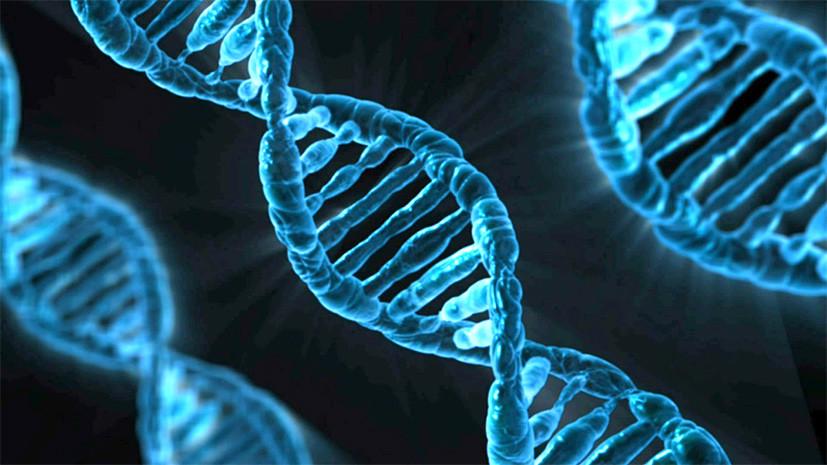 Ученые обнаружили происхождение «Гуманоида изАтакамы»