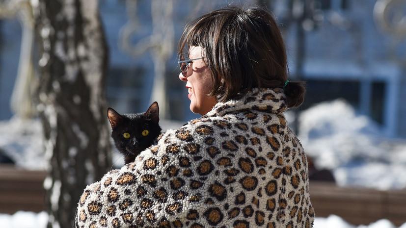 В Москве 3 апреля ожидается до +4 °С