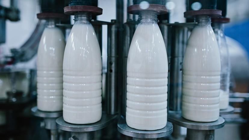 В Белоруссии отреагировали на намерение России напоить россиян отечественным молоком