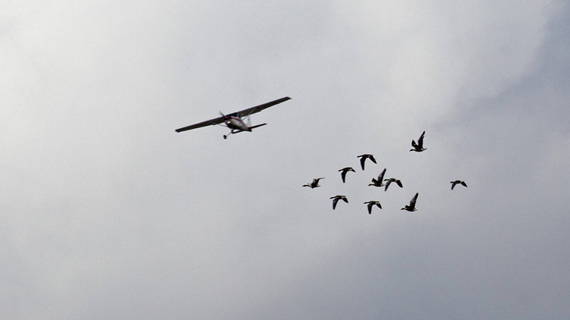 В Чехии два человека погибли при крушении легкомоторного самолёта