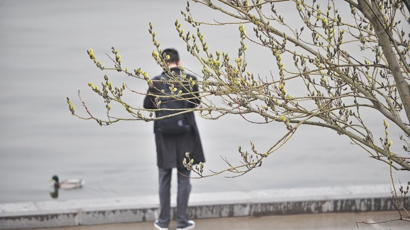 Синоптики сообщили об экологически неблагоприятных метеоусловиях в Москве 15 апреля