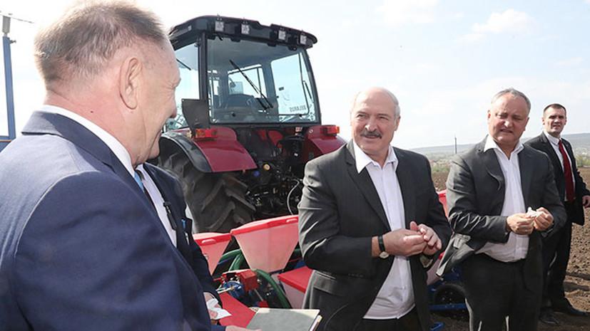 Лукашенко и Додон на тракторах засеяли поле кукурузой в Молдавии