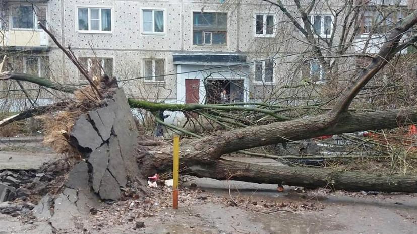 Грозовой фронт: два человека стали жертвами урагана в Московском регионе