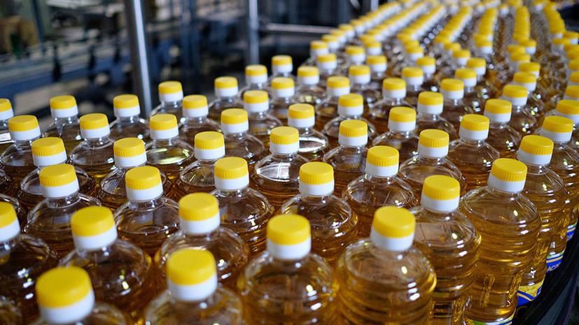 В США отметили рост российского экспорта масличных культур