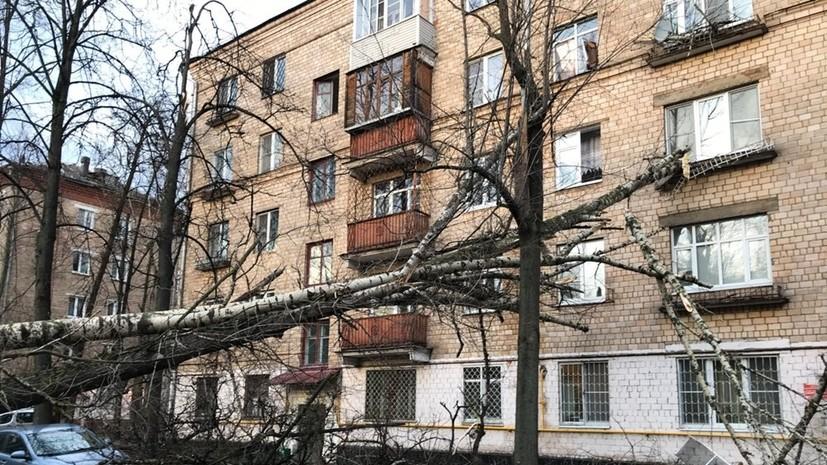 Власти Москвы рассказали о состоянии пострадавших во время урагана 21 апреля