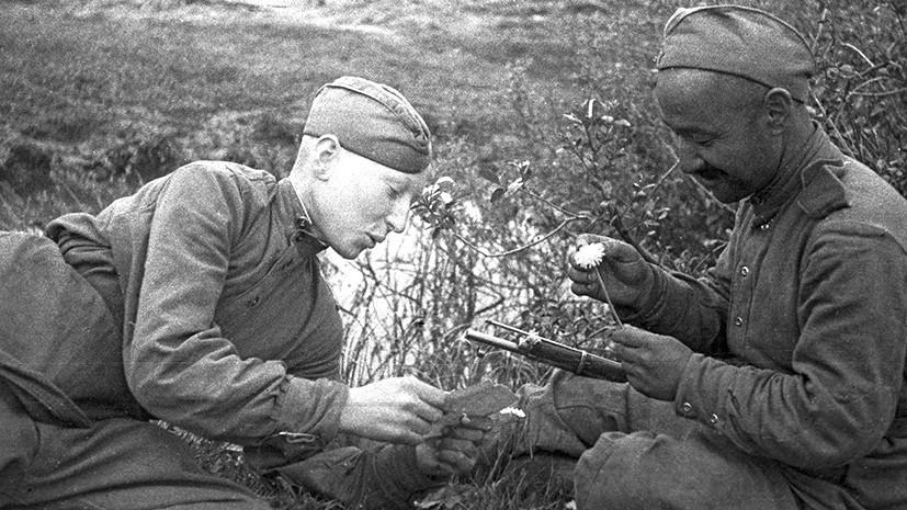 «Русский богатырь»: RT публикует письмо однополчан погибшего во время ВОВ солдата, не дошедшее до его матери