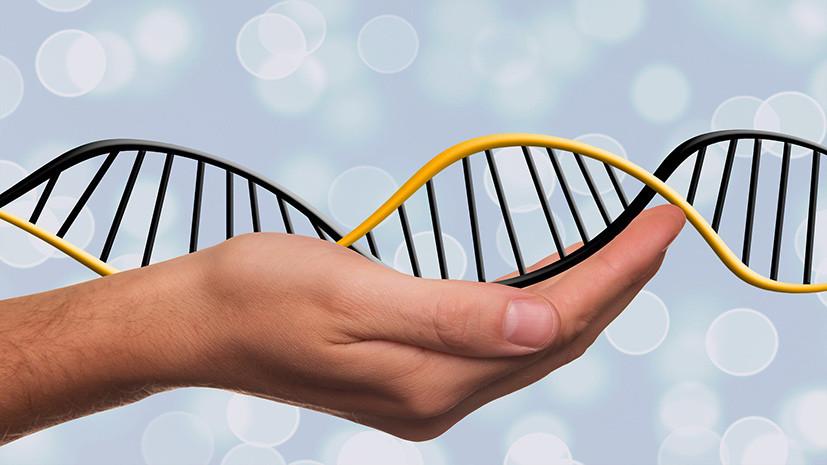 Тест RT: что вы знаете о ДНК и генах?
