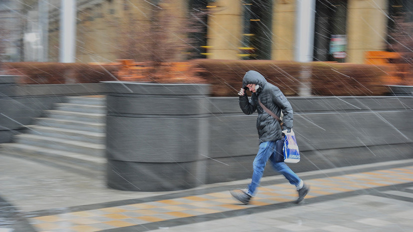 МЧС предупредило об усилении ветра и дожде в Москве