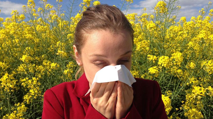 В Минздраве заявили о снижении заболеваемости аллергическим ринитом за пять лет в России
