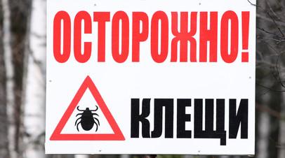Гости столицы: как уберечься от укуса клещей в Москве