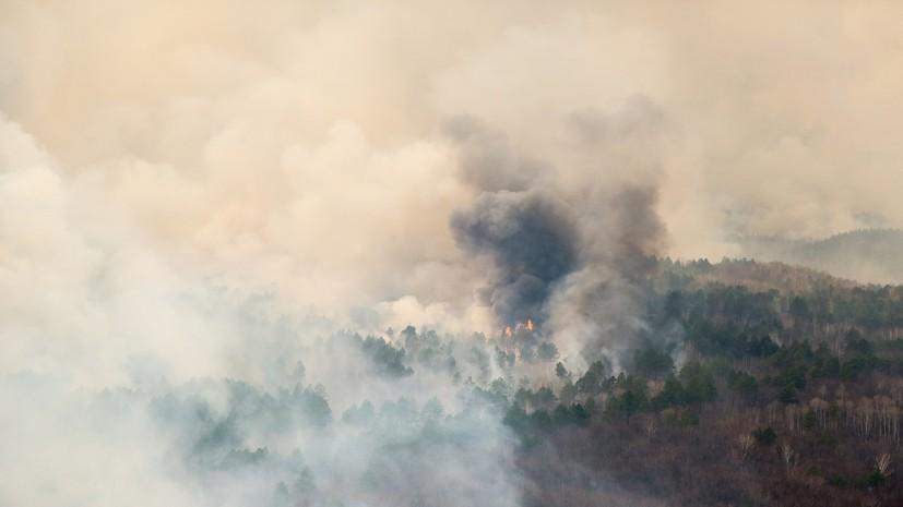 Спасатели предупредили о риске возникновения лесных пожаров в Ленинградской области