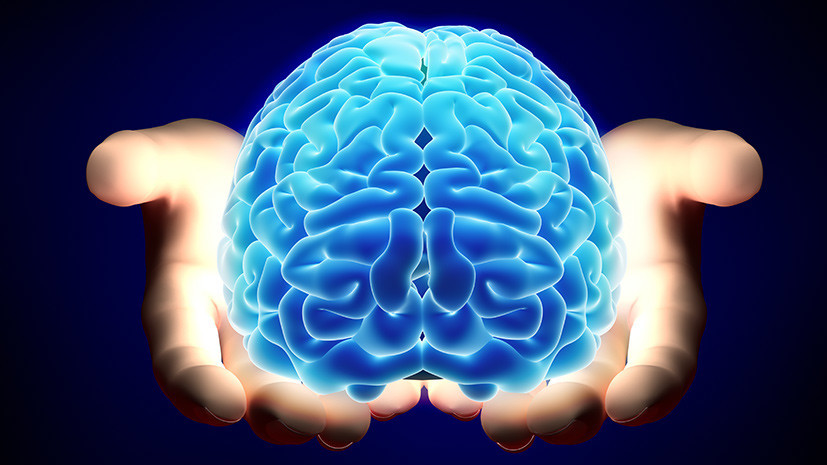 Спираль воспоминаний: как пересадка РНК может повлиять на процесс формирования памяти