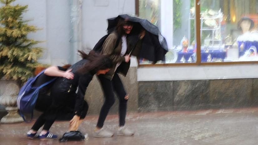 МЧС предупредило о шквалистом ветре в Москве в ближайшие часы