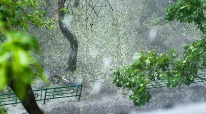 МЧС предупредило о грозе с градом в Москве вечером 17 мая