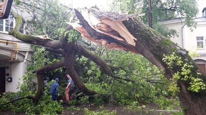 МЧС: более 50 человек пострадали от сильного ветра в регионах ЦФО и ПФО