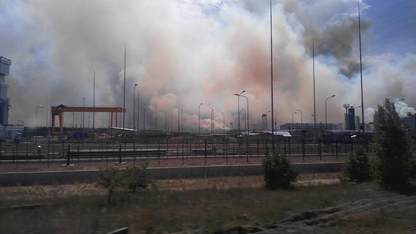 Уголовное дело возбуждено по факту пожара в чернобыльской зоне отчуждения
