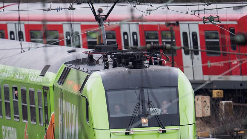 В Германии более 40 овец погибли при наезде поезда
