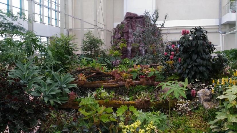 В Кемерове открыли обновлённый Ботанический сад