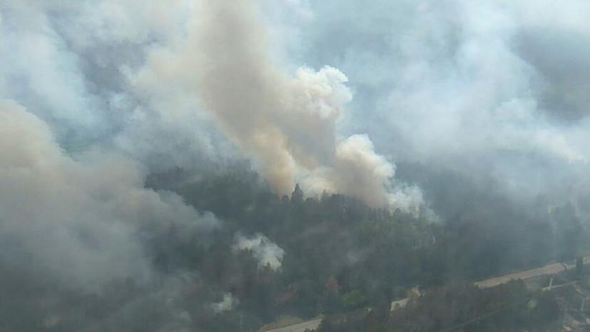 В Иркутской области заявили о чрезвычайной пожароопасности лесов 17 и 18 июня