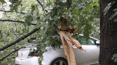 МЧС сообщило о повреждении автомобилей в результате непогоды в Москве