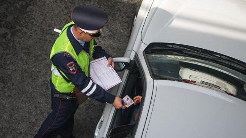 В Перми полиция перекрыла автомобильную дорогу ради утят