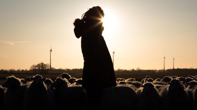 В Грузии пастух сознался в убийстве семьи американцев