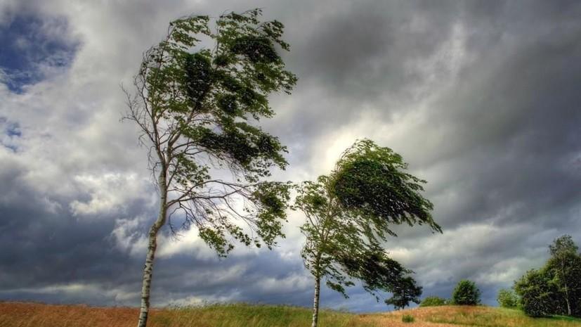 В Самарской области ожидается шквалистое усиление ветра до 15—20 м/с