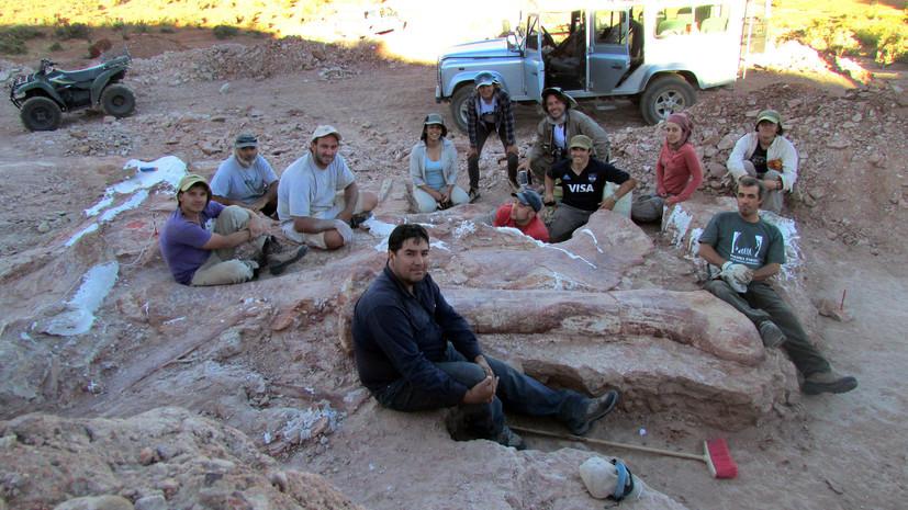 Палеонтологи нашли останки уникального динозавра в Аргентине