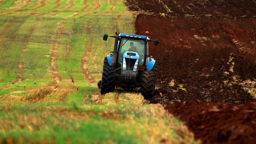 В ЕС призвали возобновить помощь пострадавшим от российского эмбарго фермерам