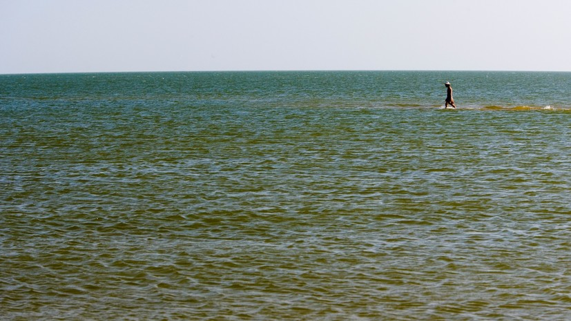 В Совфеде оценили предложение депутатов Рады расторгнуть договор с Россией по Азовскому морю