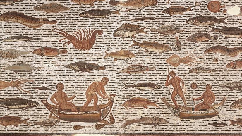 Античные китобои: как древние римляне истребили гигантских млекопитающих в Средиземноморье