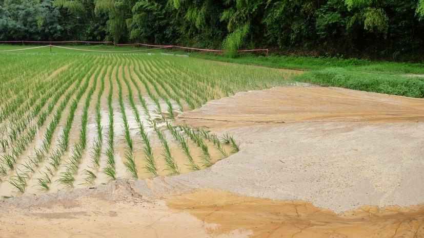 Минсельхоз Японии назвал сумму ущерба от наводнений в стране