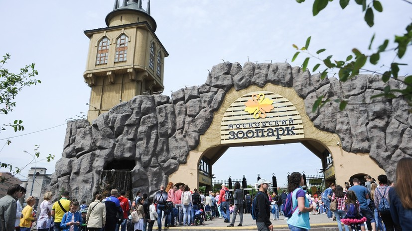 В Московском зоопарке появились бинокли для наблюдения за животными