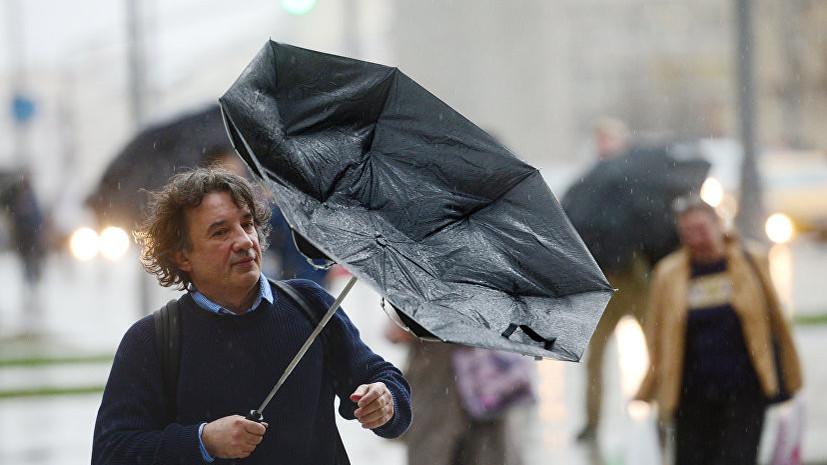 МЧС предупредило жителей Москвы о грозе и усилении ветра в ближайшие часы
