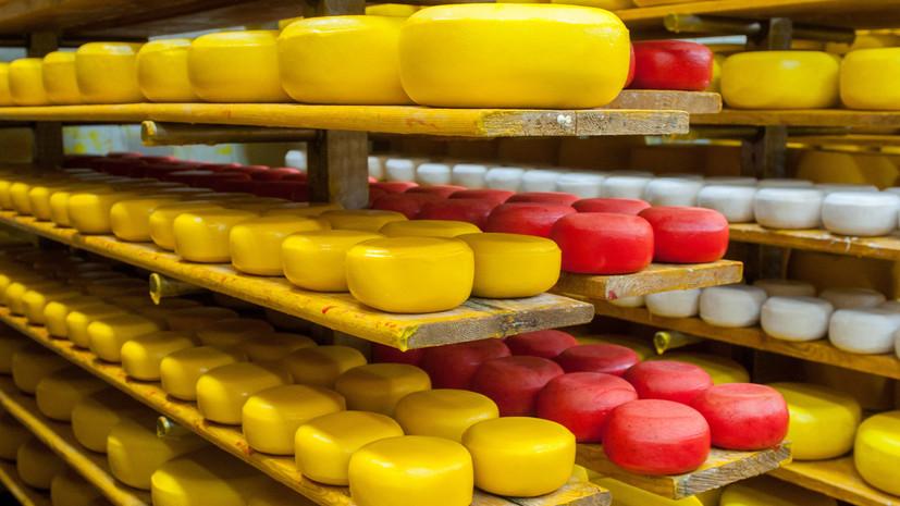 Всероссийский фестиваль сыра пройдёт в Москве в начале августа
