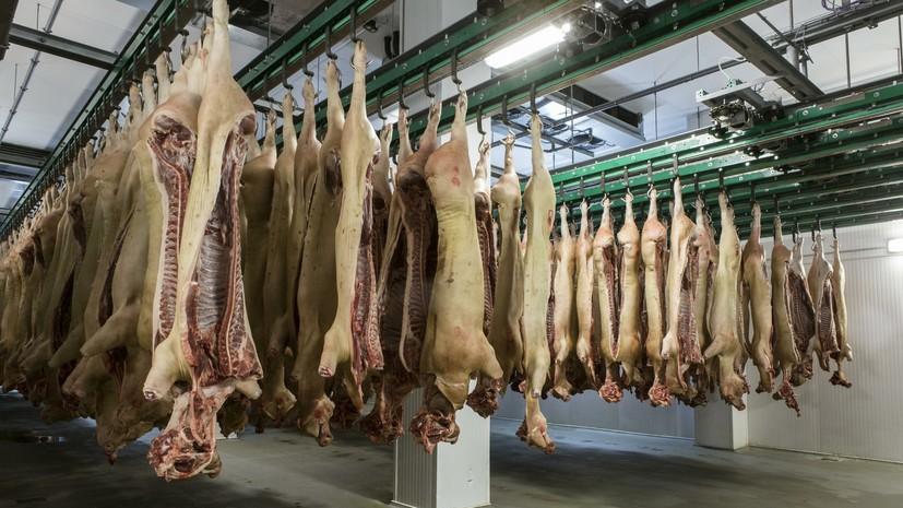 Россельхознадзор снял ограничения на ввоз свинины из Венгрии