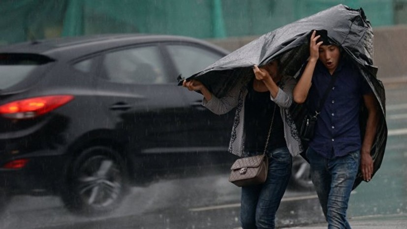 В Москве за сутки выпало около половины месячной нормы осадков