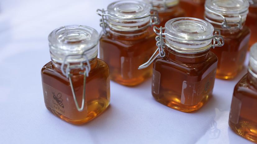 Праздник мёда прошёл в нацпарке «Куршская коса»