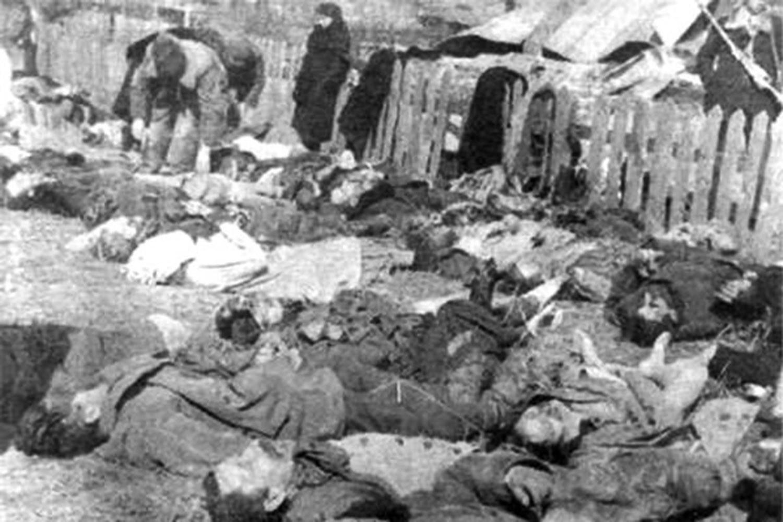«Нет причин для компромисса»: почему Порошенко и Дуда не почтили вместе память жертв Волынской резни (ФОТО)