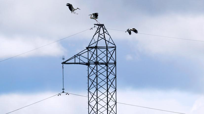 Компания «Луганское энергетическое объединение» планирует отключить за долги от энергоснабжения