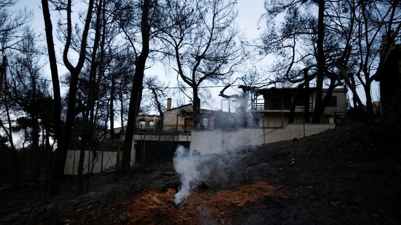 Греческие полицейские задержали подозреваемого в лесных поджогах