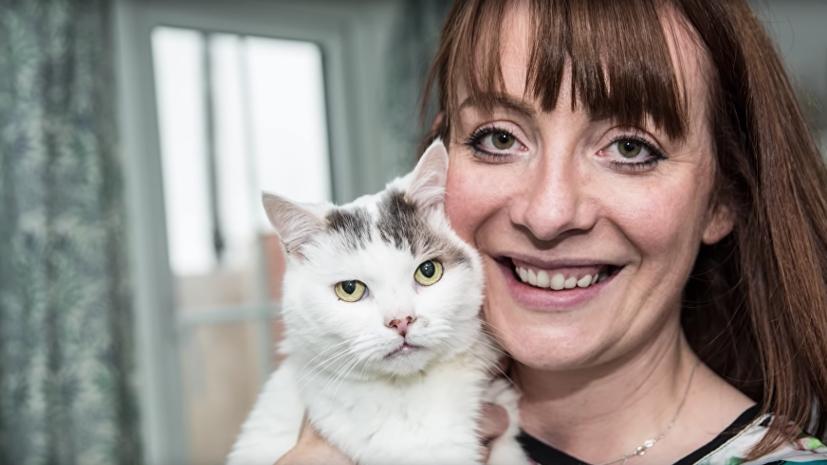 Кот по кличке Тео из британского города Реддитч посмертно получил