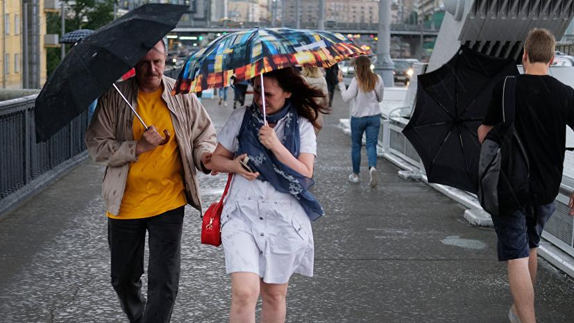 В МЧС предупредили о грозе и сильном ветре в ближайшие часы в Москве